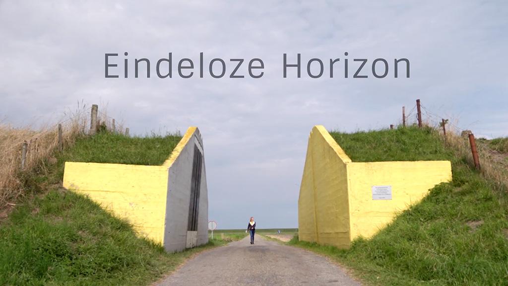 Videoproductie Eindeloze Horizon voor Landschapsbeheer Groningen