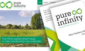 Pure Infinity, logo, huisstijl, website en acquisitie tools